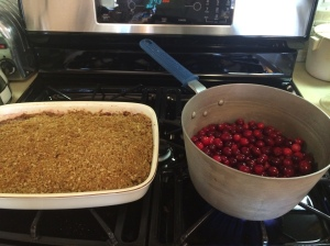 Karyn's Cranberry Crisp and Fresh Cranberry Sauce